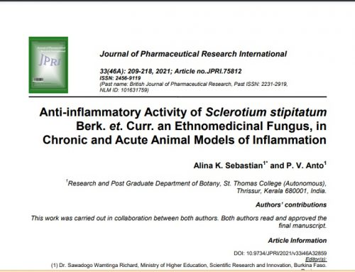Anti-inflammatory Activity of Sclerotium stipitatum Berk. et. Curr. an Ethnomedicinal Fungus, in Chronic and Acute Animal Models of Inflammation